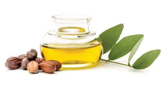 Best Castor Oil Substitutes1