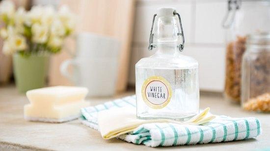 Standard White Vinegar Solution