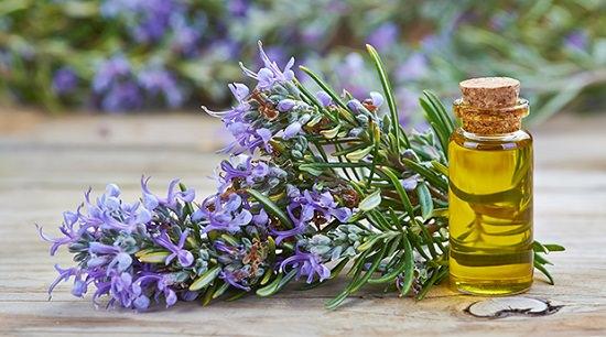 Black Castor Oil Benefits for Hair3