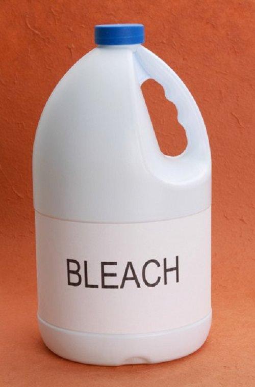 Does Bleach Kills Scorpions2