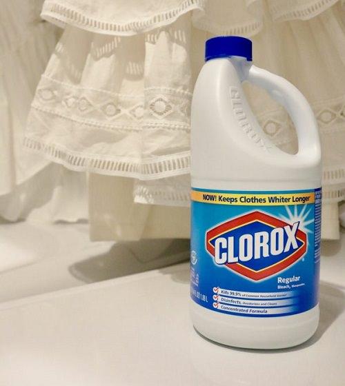 Does Clorox Kill Mold3
