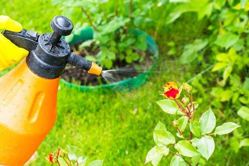 Controls Garden Pests