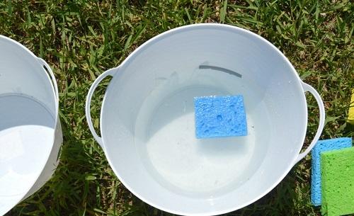 Disinfects Sloppy Sponges