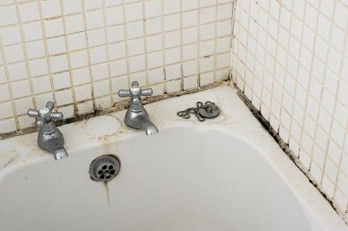 Shower Caulk Mold Remover