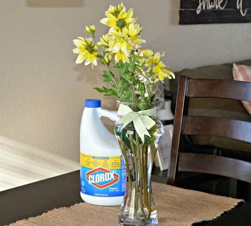 Helps Flowers Last Longer