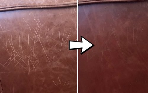 Repair Cat Scratches With Olive Oil 1