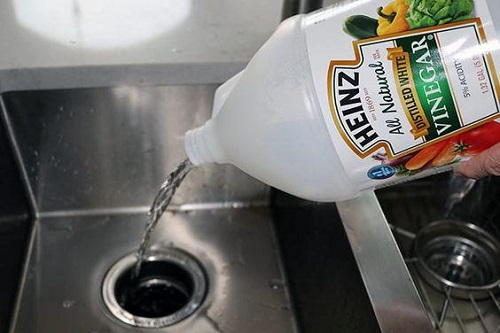 How to Clean Garbage Disposal With Baking Soda and Vinegar3