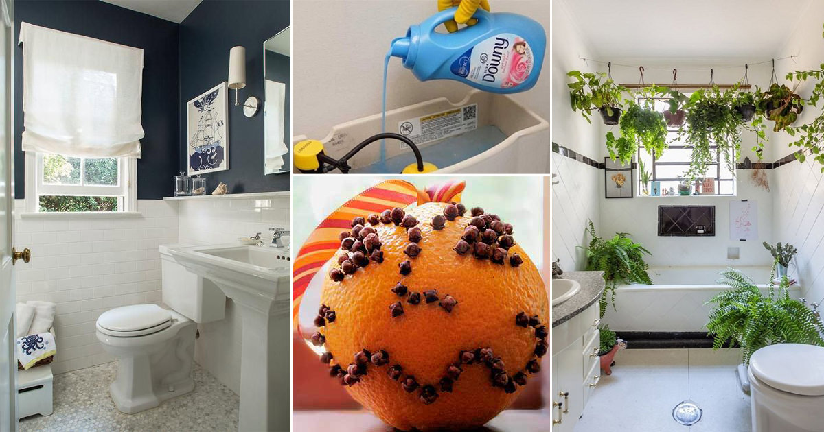 How to Make Your Bathroom Smell Great | Ideas and Recipes ...