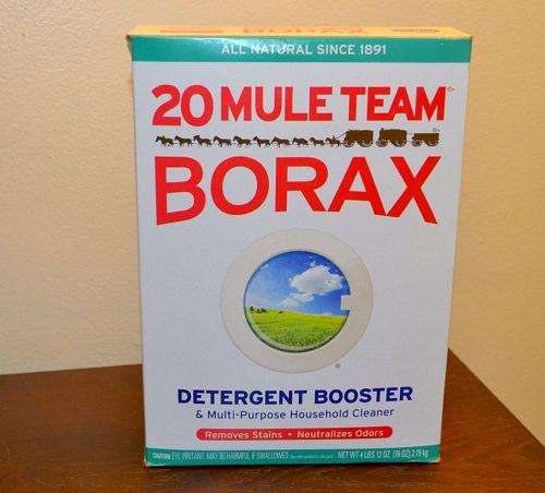 Does Borax Kill Fleas2
