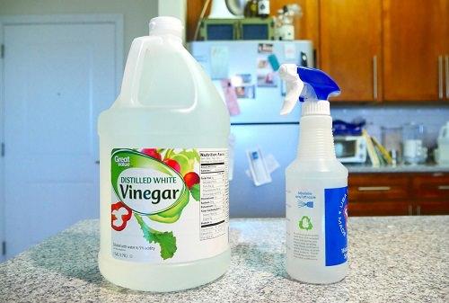 White Vinegar for Mold2