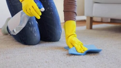 How Do You Clean Carpet With White Vinegar 2