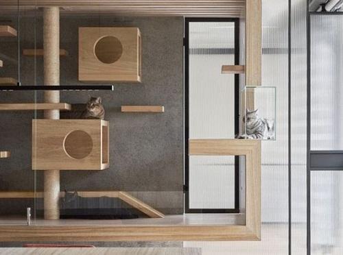 Built-In Cat Bedroom