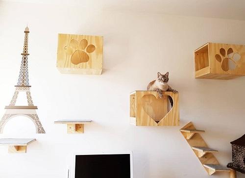 Cat Room Designs3