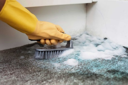 How to Clean Carpet on Stairs3