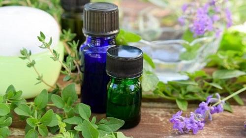 Wild Oregano Oil Benefits2