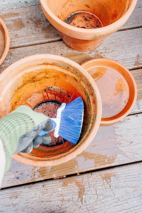 Clean Terracotta Pots