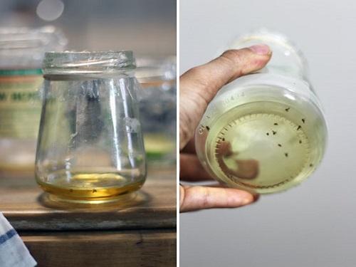 Vinegar Uses in the Garden3