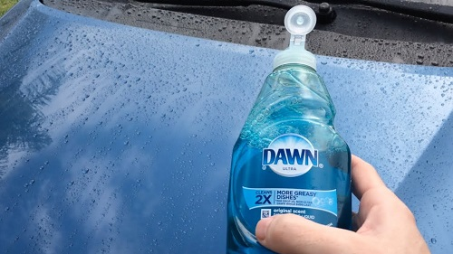 Try Dawn Dish Soap