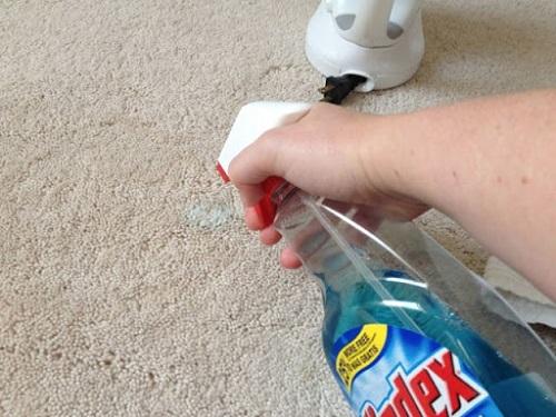 Best Ways to Clean Carpet Stains7