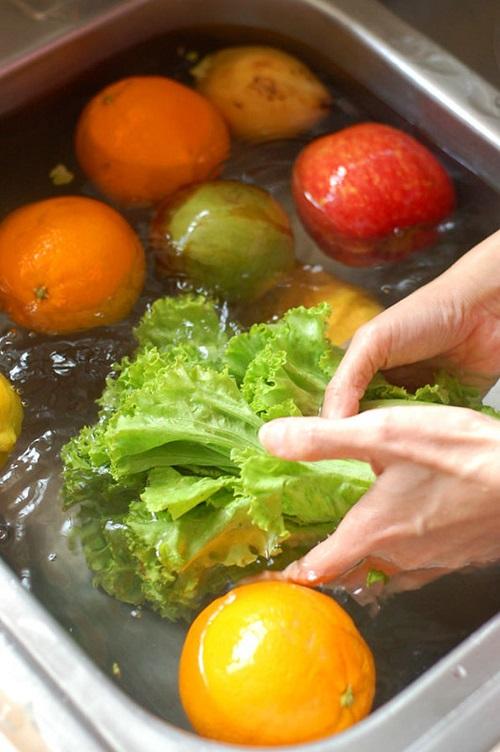 Vinegar Uses in the Garden6